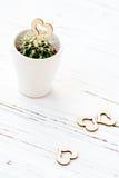Ame los cactus de los corazones con la cuerda de madera y natural Imágenes de archivo libres de regalías