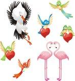Ame-me - coleção dos pássaros Imagem de Stock Royalty Free