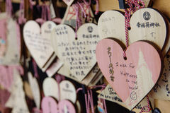 AME a Meiji Jingu, Tokyo Fotografia Stock Libera da Diritti