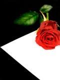 Ame o cartão com levantou-se Fotos de Stock Royalty Free