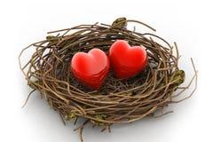 Ame o coração e o ninho Foto de Stock Royalty Free