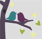 Ame pássaros Fotografia de Stock Royalty Free