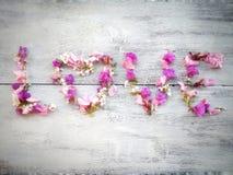 Ame a palavra feita das flores no fundo de madeira para o dia de são valentim Foto de Stock