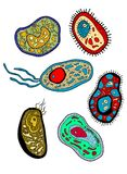 Amebas, amoebas, microbes and germs set Royalty Free Stock Photography