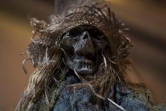 Amedronte o crânio para o Dia das Bruxas Fotografia de Stock Royalty Free
