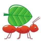 Ameise mit Blatt Lizenzfreie Stockbilder