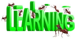 Ameisen, die das Lernen des Wortes 3d aufbauen stock abbildung