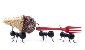 Ameisen, die Eiscreme-Kegel, Konzept tragen Lizenzfreies Stockfoto