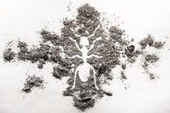Ameisen- oder Termitenschattenbildzeichnung gemacht in der Asche Stockbild