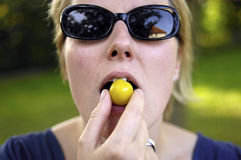 Ameixa amarela fresca Imagem de Stock Royalty Free
