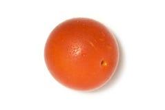 Ameixa de cereja. Fotos de Stock Royalty Free