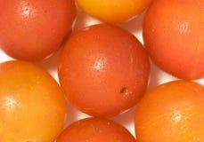 Ameixa de cereja - esferas vermelhas. Imagem de Stock Royalty Free