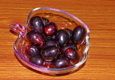 Ameixa de Jamun ou de Java Fotografia de Stock