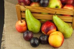 Ameixa e maçãs na tabela de madeira Autumn Fruits Colheita do outono na exploração agrícola Uma dieta saudável para crianças Imagens de Stock