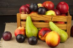 Ameixa e maçãs na tabela de madeira Autumn Fruits Colheita do outono na exploração agrícola Uma dieta saudável para crianças Fotos de Stock