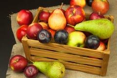 Ameixa e maçãs na tabela de madeira Autumn Fruits Colheita do outono na exploração agrícola Uma dieta saudável para crianças Foto de Stock