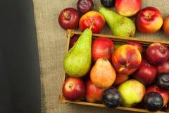 Ameixa e maçãs na tabela de madeira Autumn Fruits Colheita do outono na exploração agrícola Uma dieta saudável para crianças Foto de Stock Royalty Free