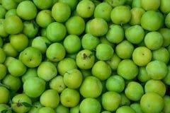 Ameixas ácidas verdes maduras fotografia de stock royalty free