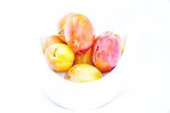 Ameixas alaranjadas em um fundo branco fotografia de stock royalty free