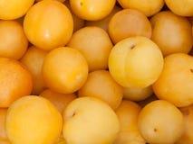 Ameixas amarelas Imagens de Stock
