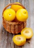 Ameixas amarelas Fotografia de Stock