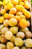 Ameixas amarelas frescas Frutos maduros em uma caixa de madeira no jardim do ver?o fotografia de stock royalty free