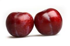 Ameixas azuis maduras frescas Fotos de Stock Royalty Free