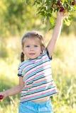 Ameixas da colheita da menina imagens de stock royalty free
