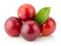 Ameixas de cereja vermelhas isoladas no fundo branco Fotos de Stock Royalty Free