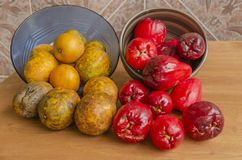 Ameixas de junho e maçãs de Otaheite imagem de stock