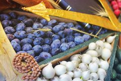 Ameixas e cebolas da colheita fotos de stock royalty free