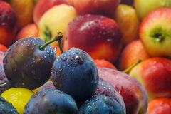 Ameixas e maçãs do fruto fresco Fotos de Stock Royalty Free