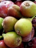 Ameixas e peras vermelhas de St John Imagem de Stock Royalty Free