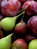 Ameixas e peras vermelhas de St John Fotografia de Stock Royalty Free