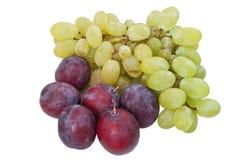 Ameixas e uvas Fotografia de Stock Royalty Free