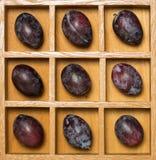 Ameixas frescas da ameixa seca na caixa de sombra Foto de Stock