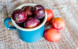 Ameixas frescas em uma caneca azul Imagens de Stock