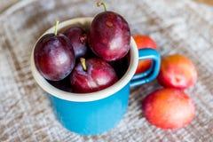 Ameixas frescas em uma caneca azul Imagem de Stock Royalty Free