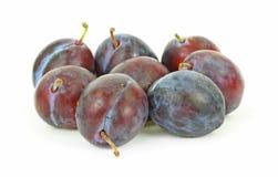 Ameixas italianas pequenas da ameixa seca do grupo Imagem de Stock