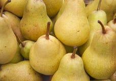 Ameixas maduras naturais imagens de stock