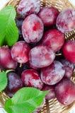 Ameixas na cesta Foto de Stock