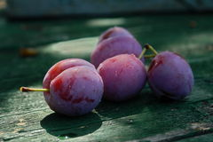 Ameixas roxas Fotografia de Stock