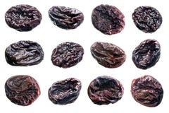 Ameixas secas. fotografia de stock