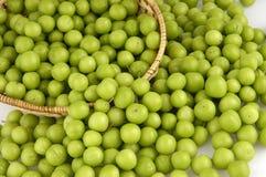 Ameixas verdes Imagem de Stock