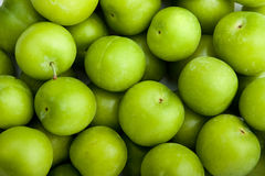 Ameixas verdes Imagens de Stock Royalty Free