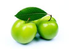 Ameixas verdes frescas Imagens de Stock