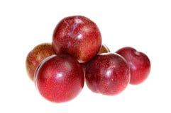 Ameixas vermelhas Imagem de Stock Royalty Free