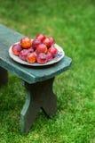 Ameixas vermelhas em uma placa no jardim Imagem de Stock