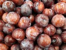 Ameixas vermelhas frescas Foto de Stock