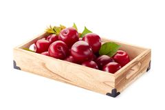 Ameixas vermelhas maduras com as folhas na bandeja varejo foto de stock royalty free